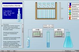 Virtual Physiology II - SimHeart II | 2013